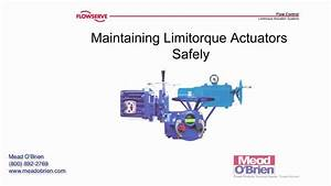 Flowserve Limitorque Actuators  General Safety Precautions