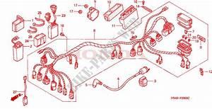 2001 Trx 350 Engine Diagram : wire harness for honda fourtrax rancher 350 4x4 electric ~ A.2002-acura-tl-radio.info Haus und Dekorationen