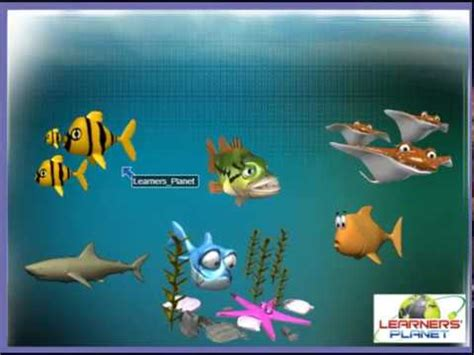 Grade 6 Science Form and Movement in Animals session 3