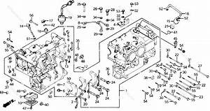 Honda Motorcycle 1987 Oem Parts Diagram For Cylinder Block