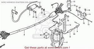 Honda Cd70b General Export Type 4 Wire Harness
