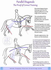 Hht U0026 39 S Dressage Diagrams Give Unique Visual Clarity To Many