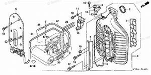 Honda Outboard Parts By Year 2006 Oem Parts Diagram For
