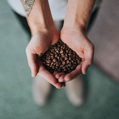Michigan's longest running michigan's longest running independent coffee shop. Plymouth Coffee Bean Company | Home | Local Coffee