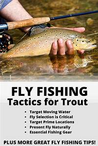 What Is Fly Fishing  A Complete How To Guide