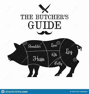 Pork Meat Cut Lines Diagram Poster  Guide For Butcher