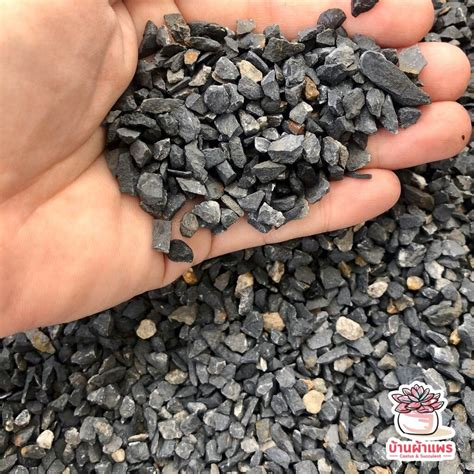 ถุงละ 1 กก. หินเกล็ดดำใหญ่ หินโรยหน้ากระถาง แคคตัส ...