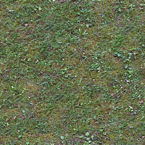 Browsing Seamless Grass Category Good Textures