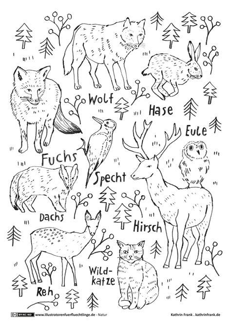 Dir stehen auf unserem portal unterschiedliche ausmalbilder zum thema kalender & zeit bereit. Malvorlagen Waldtiere Kostenlos