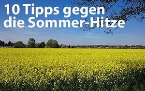 Tipps Gegen Hitze : 10 tipps gegen die sommer hitze selbstst ndig im netz ~ A.2002-acura-tl-radio.info Haus und Dekorationen