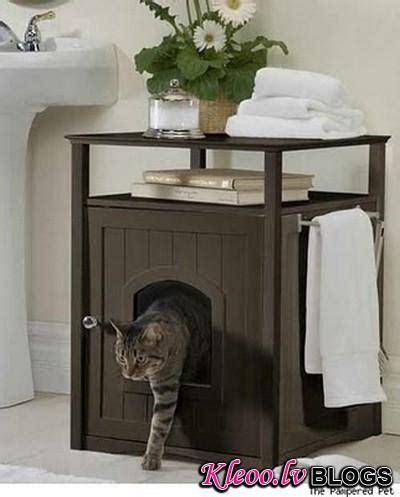 Neparastas mēbeles kaķiem - Māja - Blogs - Kleoo.lv
