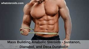 Anabolic Steroids Sustanon  Dianabol  And Deca Durabolin