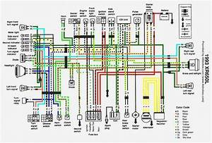 Honda Nx650 Wiring Diagram