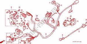 Wire Harness  Ch125j  L  M  N  P  R  For Honda Ch 125 Spacy