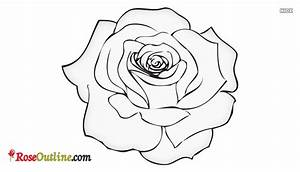 Easy Rose Drawing Outline @ Roseoutline.com