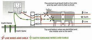 Wiring Diagram Hot Wire Fence