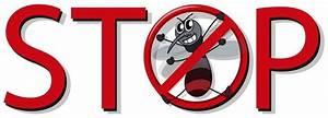 Hausmittel Gegen Mücken In Der Wohnung : m cken vertreiben hausmittel m cken in der wohnung bek mpfen ~ A.2002-acura-tl-radio.info Haus und Dekorationen