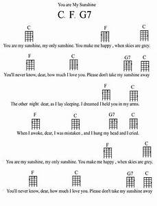 Guide To The Types And Styles Of The Ukulele  With Images