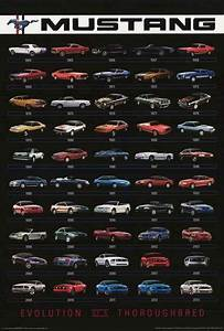 Ford Mustang Evolution 1964-2013 Poster 24x36 | Mustang cars, Ford mustang, Car posters