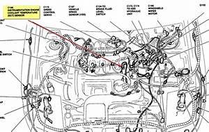 3 1l V6 Engine Diagram