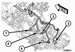 2007 Dodge Ram Transmission Wiring Harness : dodge ram 1500 questions my 2007 dodge ram 1500sxt quad ~ A.2002-acura-tl-radio.info Haus und Dekorationen