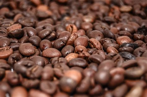 Why did the coffee file a police report? Fried Coffee Beans Online - keralaspicesonline.com