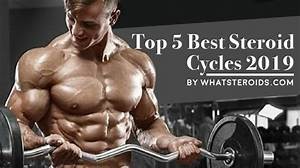 What Steroids Blog