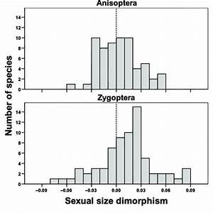 Distribution Of Sexual Size Dimorphism  Ssd  In