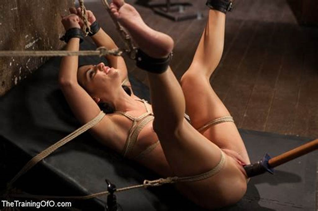 #The #Training #Of #A #Model #Or #A #Slave? #Day #Two