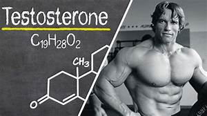 Top 8 Secrets To Boost Your Testosterone Levels Naturally  U0026 Fast