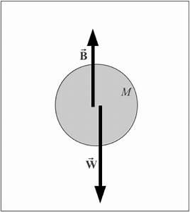Buoyant Force Free Body Diagram