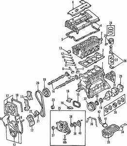 Oil Pump For 2001 Hyundai Accent