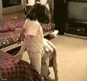 animals being dicks 12 funny and painful gifs With girls humping the floor