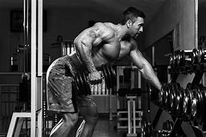 5 Bodybuilding Programs You Should Know About