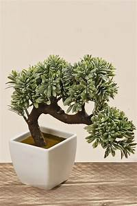 Bonsai Im Glas : kunstpflanze bonsai im pflanztopf kunstblume ~ Eleganceandgraceweddings.com Haus und Dekorationen