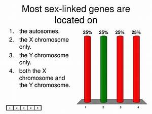 Most Sex Linked Genes Are Located On