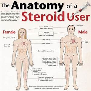The Anatomy Of A Steroid User  Fitness  Exercise