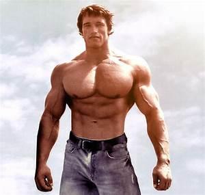 Arnold Schwarzenegger | Arnold schwarzenegger | Pinterest