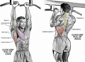 Build Your Upper Body With Close
