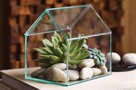 Terrarium คือการนำพืชมาปลูกในขวดหรือโหลแก้ว ซึ่งเป็นการ ...