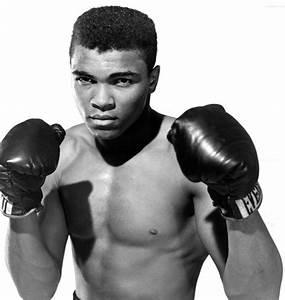 Muhammad Ali Celebrity Net Worth - Salary, House, Car