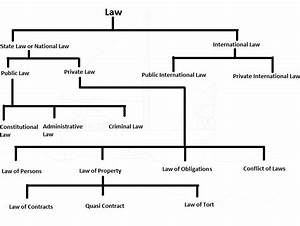 Classification Of Law With The Help Of Diagram