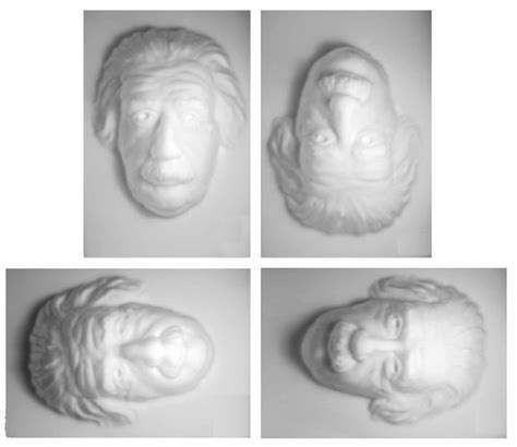 In this case it's the face of albert einstein*. The hollow-face illusion used in experiment 2 shown in the four... | Download Scientific Diagram