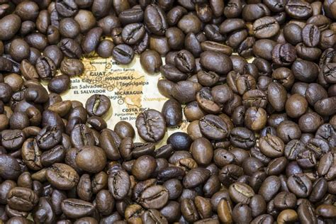 Ratings, reviews and photos from the local customers and articles about arabica. 5 Best Guatemalan Coffee Brands in 2020