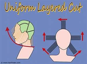How To Cut A Uniform Layered Haircut