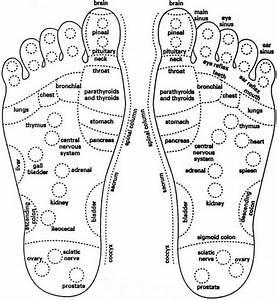 Sciatic Nerve In Foot Diagram