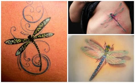 Tatuajes de libélulas y su sorprendente significado
