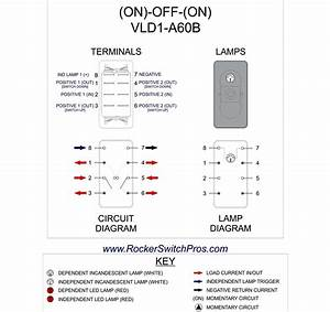 Audi A4 Window Wiring Diagram