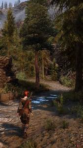Forest, At, Skyrim, Special, Edition, Nexus
