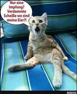 Debeste De Lustige Bilder Witze Videos Und Fb Spr Che